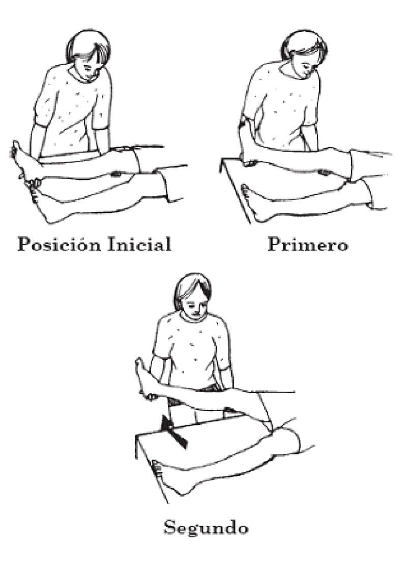 Establecer un programa de ejercicios