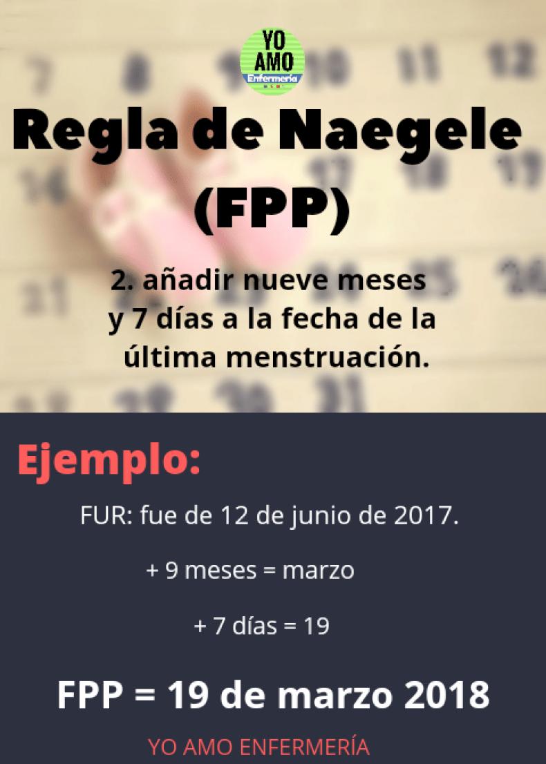 REGLA DE NAEGELE2