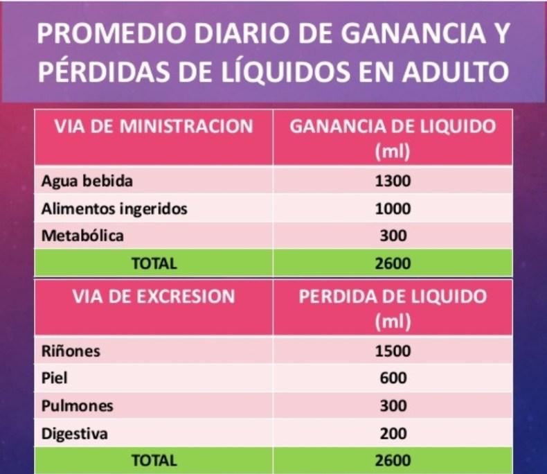 promedio de ganancia y perdidas de líquidos diario