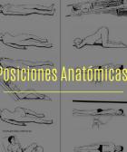 POSICIONES ANATÓMICAS BÁSICAS