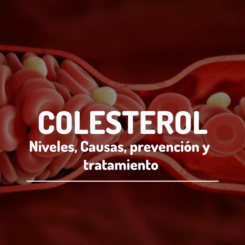 Colesterol niveles, causas, prevención y tratamiento
