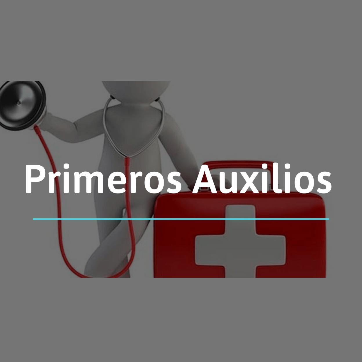 Los primeros auxilios son aquellas medidas inmediatas que se toman en una persona lesionada, inconsciente o súbitamente enferma, en el sitio donde ha ocurrido el incidente y hasta la llegada de la asistencia sanitaria