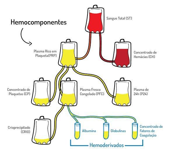 hemoderivados y hemocomponentes