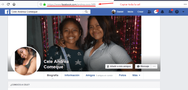 nombre de usuario url perfil facebook