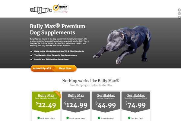 vitaminsforpitbulls.com design (April 2014)