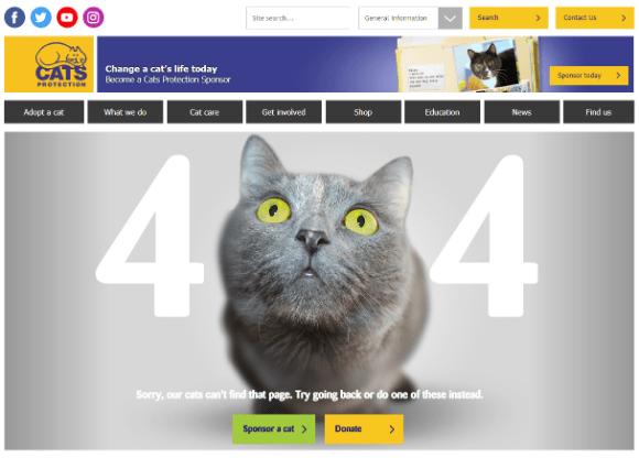404-cat Theme Builder Layout