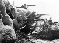 Defensores judíos