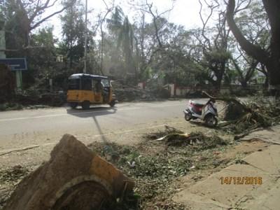 Cyclone Vardah Street View