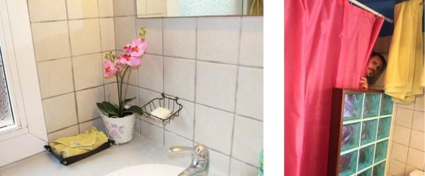 cortinas fucsia, orquideas en el baño