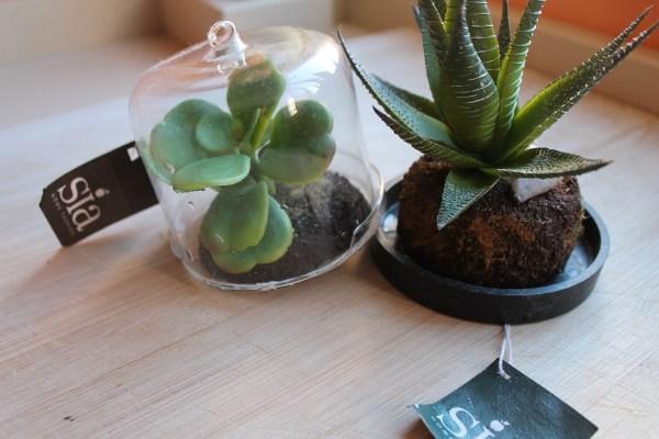 plantas de plástico falsas de mentira SIA