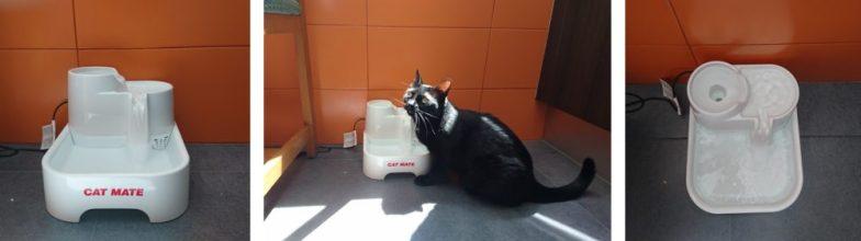 bebedero fuente gatos