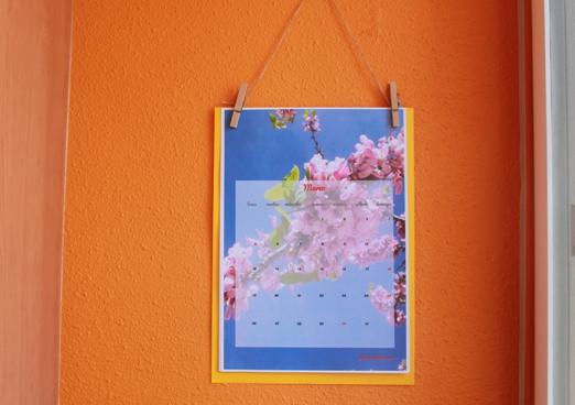 cielo flor marzo