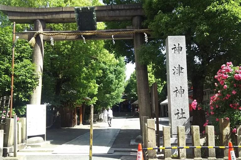 神津神社 春まつりの看板の出ている鳥居
