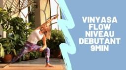 vinyasa-flow-niveau-débutant