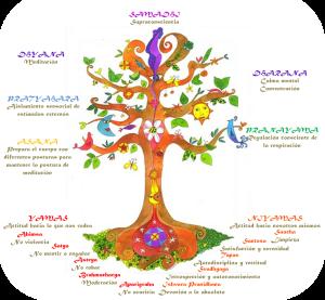 arbol-ashtanga