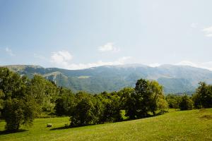 Carol_Macartney_Retreat_Italy_Abruzzo_5