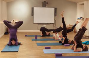 Carol_Nettlecombe_Farm_Yoga_2