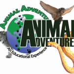 Animal Adventures Logo
