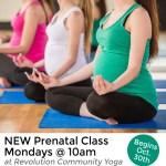 Prenatal-caption-for-web-site