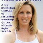 Sue-Cushing-Next-Level-Flow