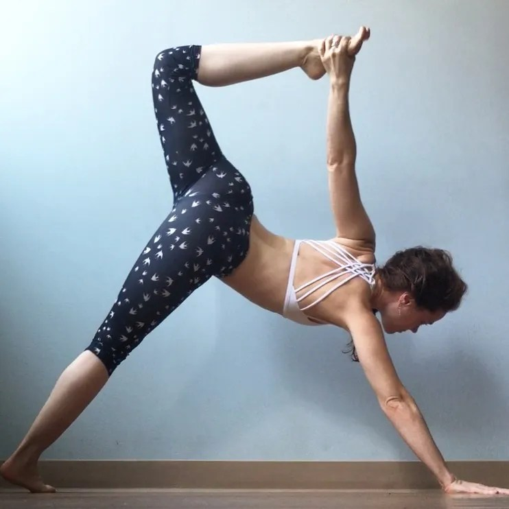 Yoga Anatomy Academy - Online Yoga Anatomy Mentorship