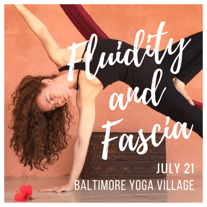 yoga, fascia, baltimore yoga village, yoga workshop, july 21
