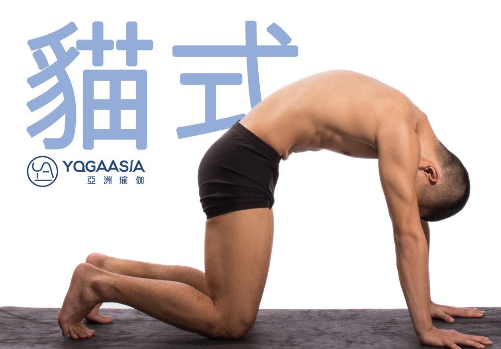 日常瑜伽 》這幾個動作 每天都該做 – Yoga Asia 亞洲瑜伽