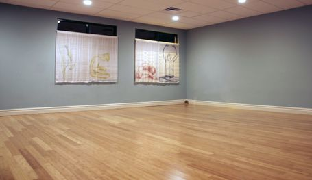 yoga_for_wellness_pro_studio_boise[1]
