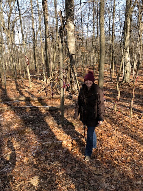 Forest Bathing in New Jersey