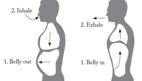 Deep-Belly-Breathing