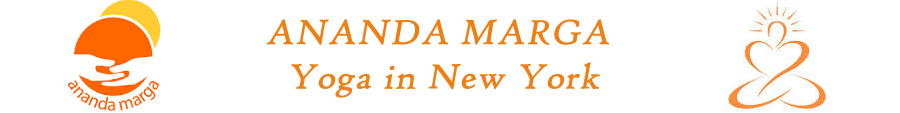Ananda Marga Yoga in New York Logo