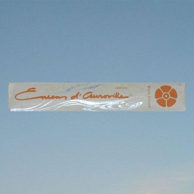 Suitsuke – White ginger – Valkoinen inkivääri – Maroma Auroville
