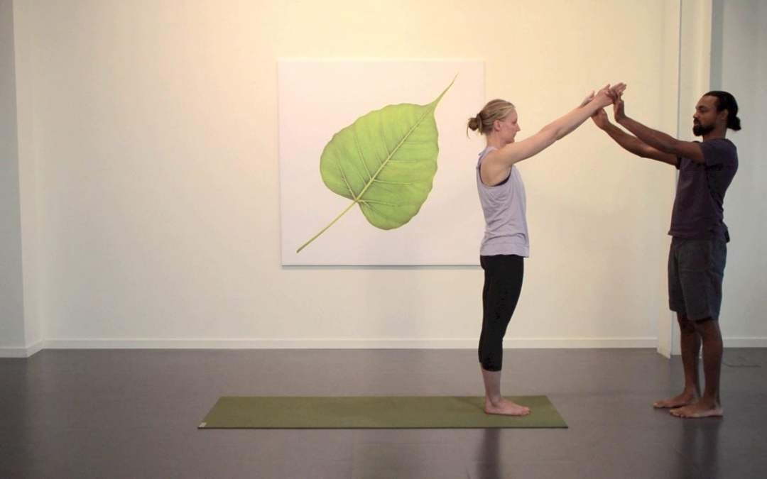 Surya A breakdown of Hatha Yoga