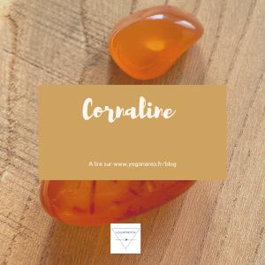 Read more about the article Cornaline : créativité et féminité