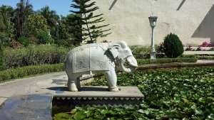 Annette Bauer, Yogannetteblog.de, Wasser, Seerosen, Elefant