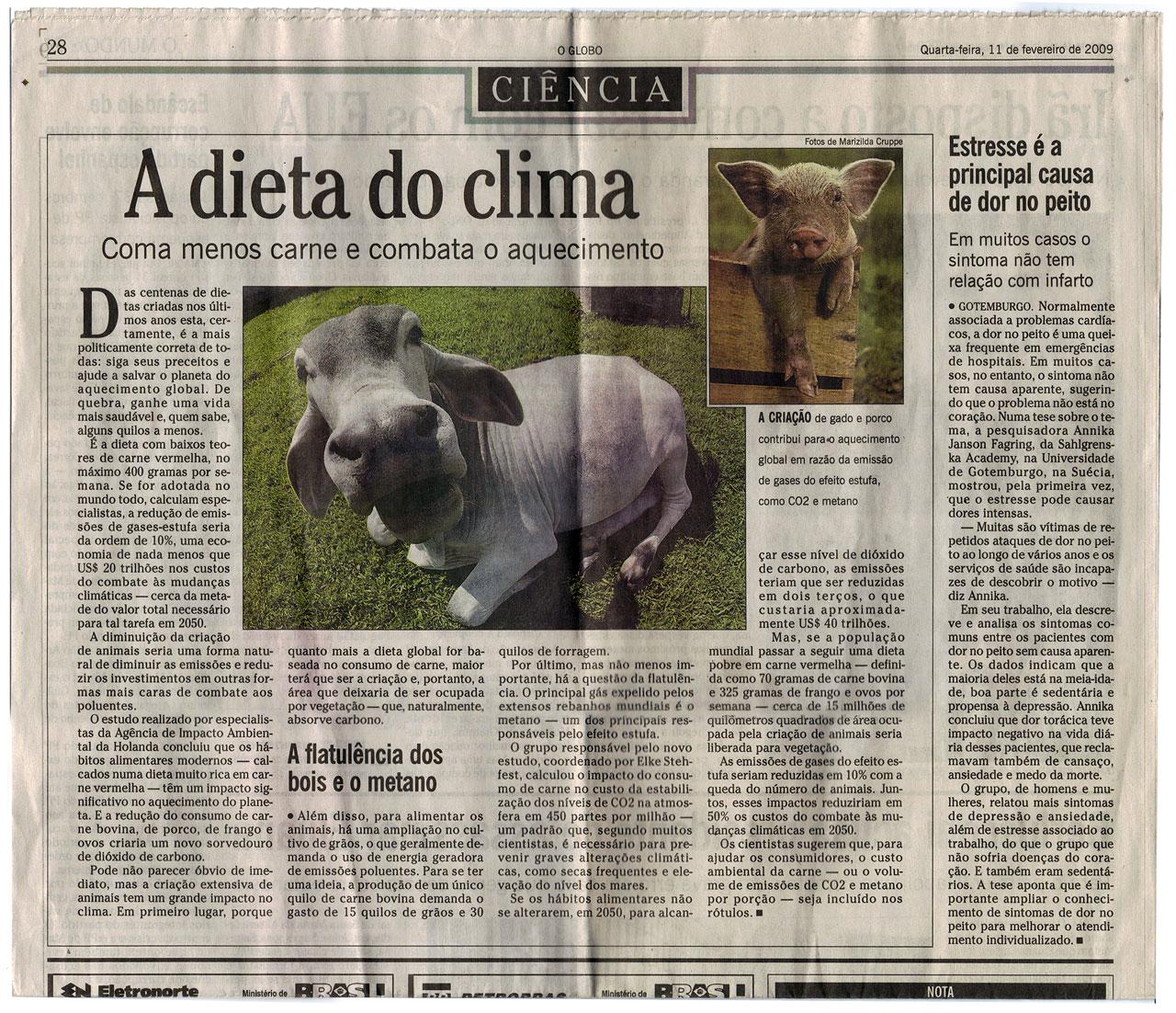 Matéria publicada no jornal O Globo, dia 11/2/2009