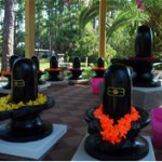 shiva-lingams