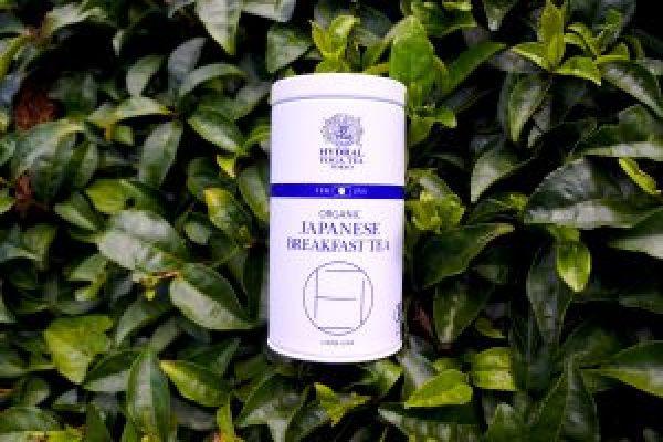 Japanese Breakfast Tea from Hydral Yoga Tea Tokyo (Organic Green Tea and Matcha Blend)