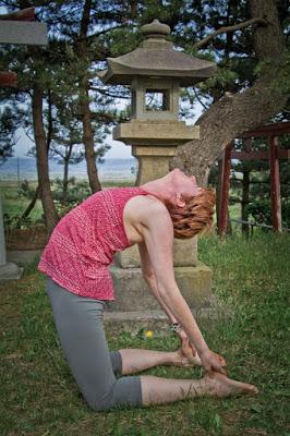 Yoga for Gratitude for Beginner Yogis
