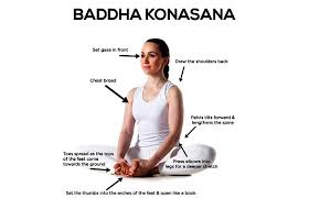 Alignment and Balance with Yoga