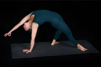 """pose of the month camatkarasana """"wild thing""""  yoga union"""