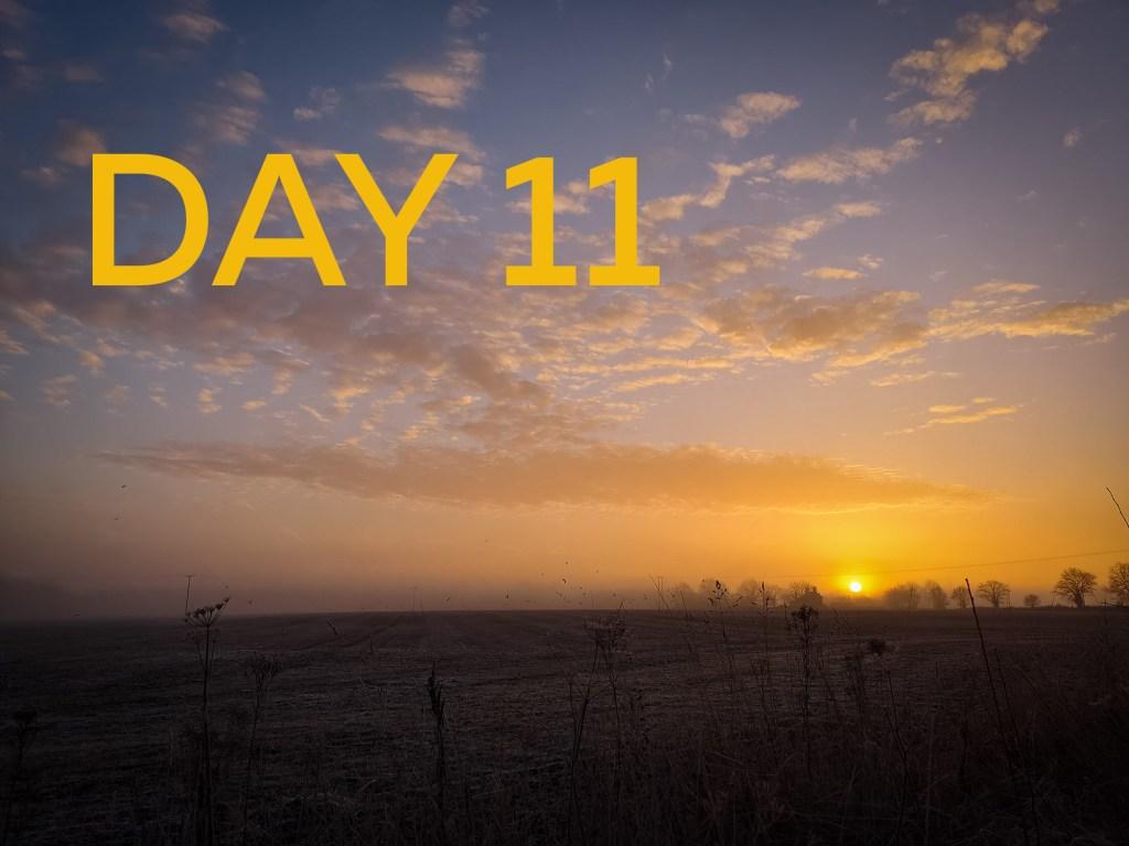 Sunrise walk yogavision DAY 11
