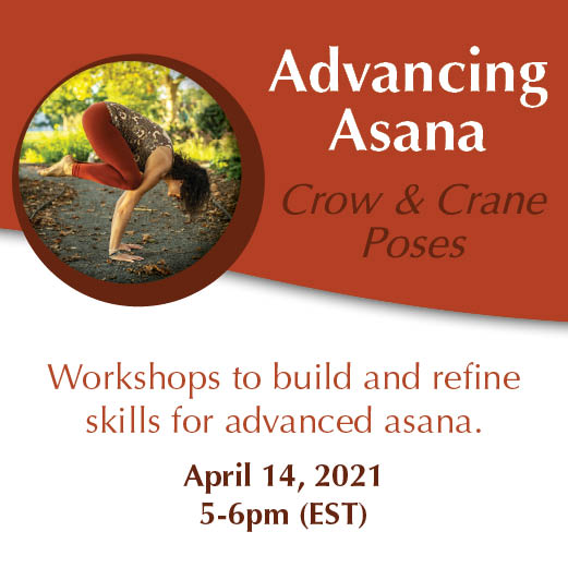 Advancing Asana Workshop Series April 4 Crow and Crane Poseswith Yoga and Wellness with Angelina Fox. ERYT500, YACEP Yoga Teacher and Ayurveda Health Counselor