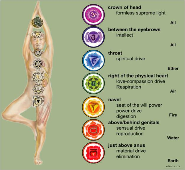 Kundalini, chakras, Bandhas | Yoga With Subhash