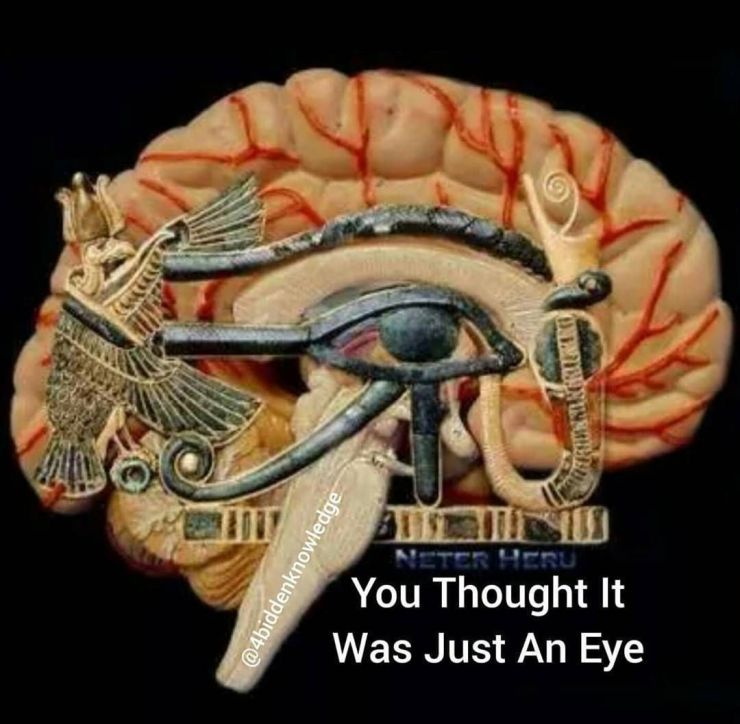 pineal gland in ancient art