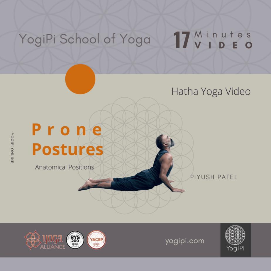 Yoga Vido Course