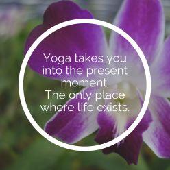 yogtemple_yoga_quotes (89)