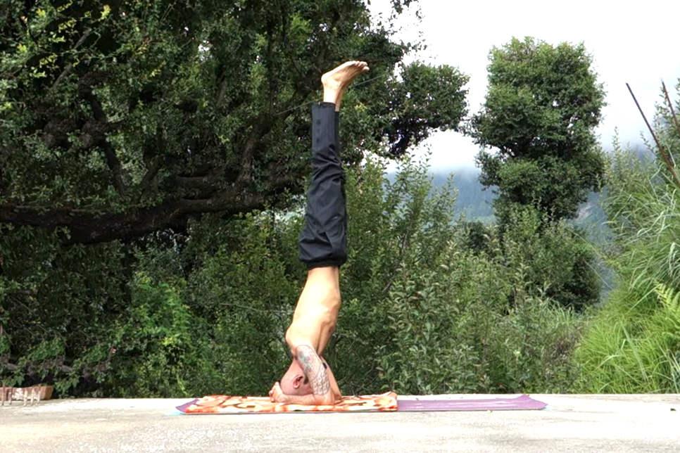 Sirsasana YogTemple - Yoga Asana Glossary