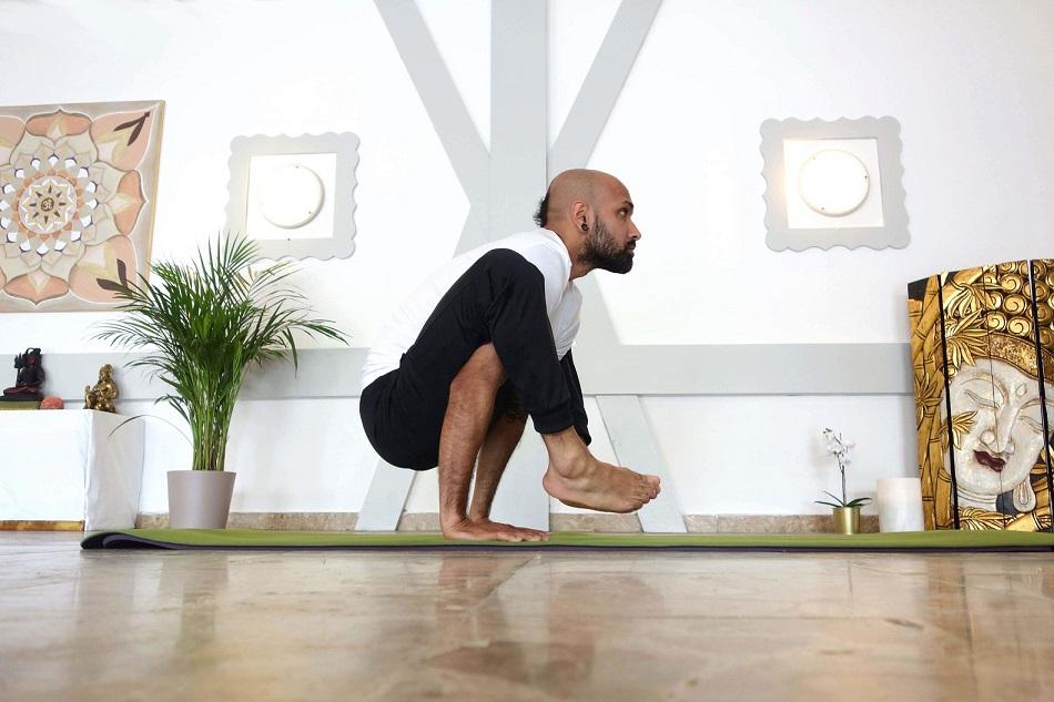 dwihastabhujasana yogtemple - Yoga Asana Glossary