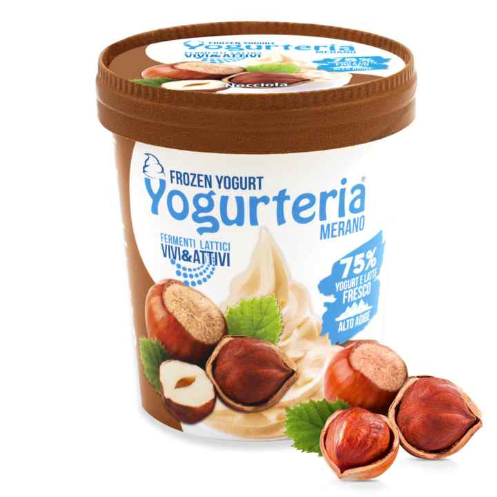 Frozen Yogurt alla Nocciola